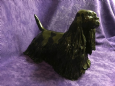 Eve Pearce Hand-Made Model - Spaniel (American Cocker)